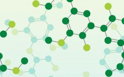 Hạt nhựa sinh học giá rẻ – Công ty uy tín cung cấp