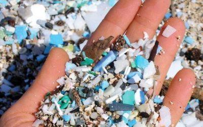 Hạt vi nhựa là gì – Tác hại đối với sức khỏe và môi trường