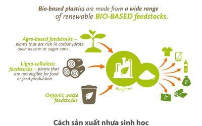 Khám phá cách sản xuất nhựa sinh học cơ bản