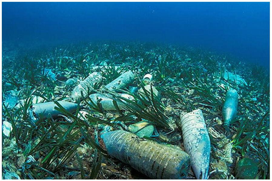 Hộp nhựa mang đi sẽ nhanh chóng trở thành tai họa của đại dương