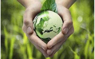 Hành trang vào đời: Cùng con học cách sống xanh