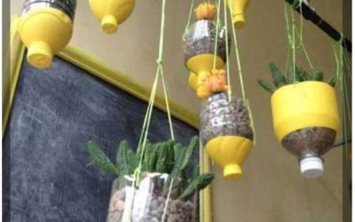 Mẹo vặt tái chế nhựa trong gia đình khiến cho không gian tươi mát