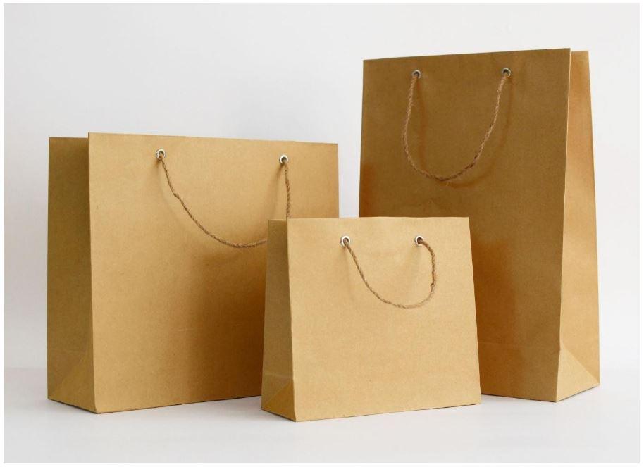 Túi giấy trong khi mua sắm sẽ là một giải pháp thay thế mới