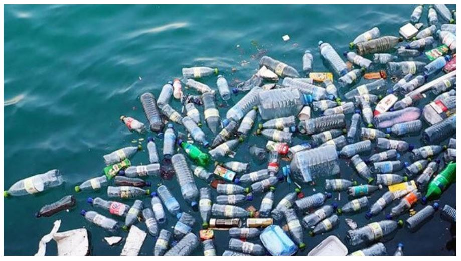 Hiểm họa rác thải nhựa trở thành tình trạng báo động đối với đại dương