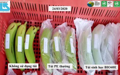 [Góc thực nghiệm] Túi bảo quản trái cây từ màng sinh học giúp bảo quản trái cây lâu hơn.