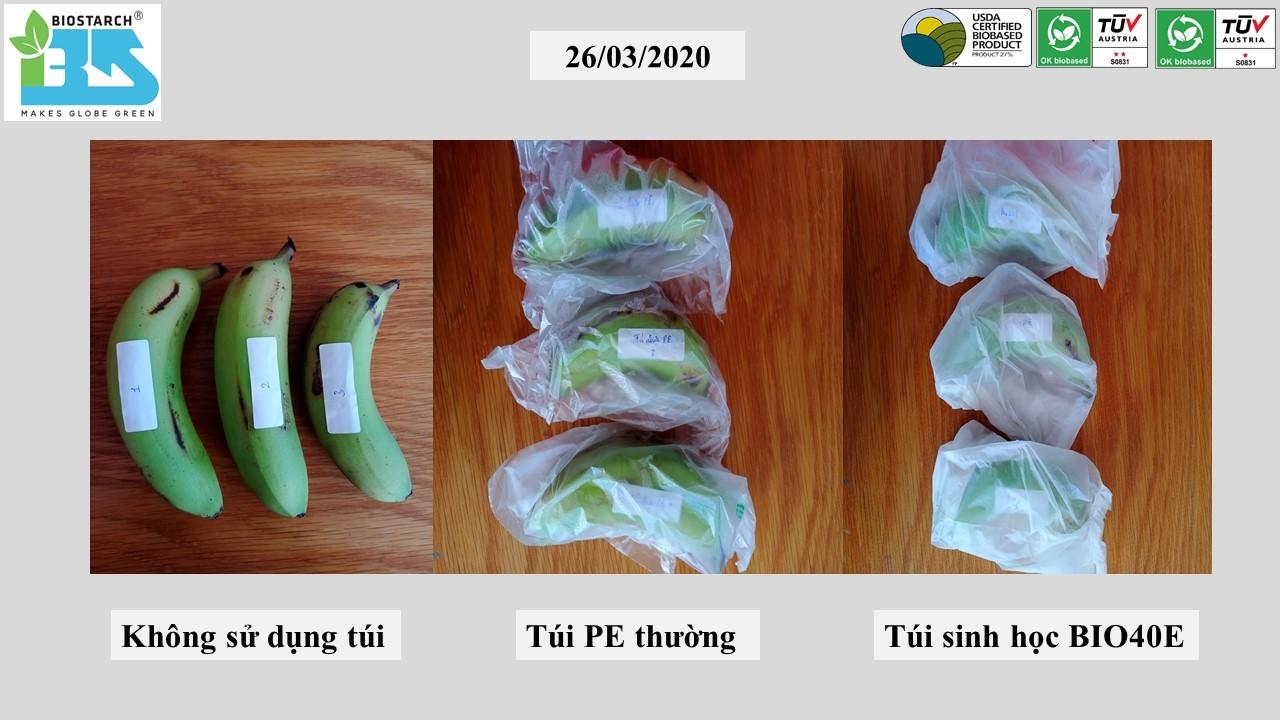 Túi bảo quản trái cây từ màng sinh học
